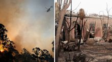 'It's too soon!': Why rainfall could pose a bigger bushfire threat