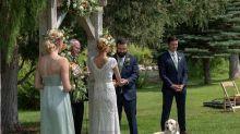 Cachorro trolla foto de casamento com pose hilária e se torna viral