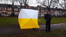 Police probe launched after 14-year-old girl raped in north London park