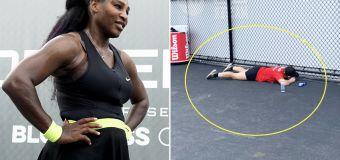 '2020 in a nutshell': Fan's amazing Serena moment