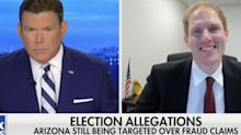 An Arizona GOP official tore into the state's election recount on Fox News: 'This was not a stolen election'