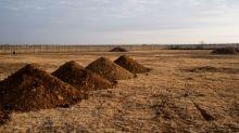 Na África do Sul, comoção sobre os túmulos para os mortos da COVID-19