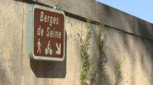 Pollution, trafic, bruit: quels sont les effets de la fermeture des voies sur berge?