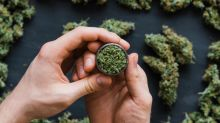 AuroraCannabis Is Speculative — And It Might Take a Breather Soon