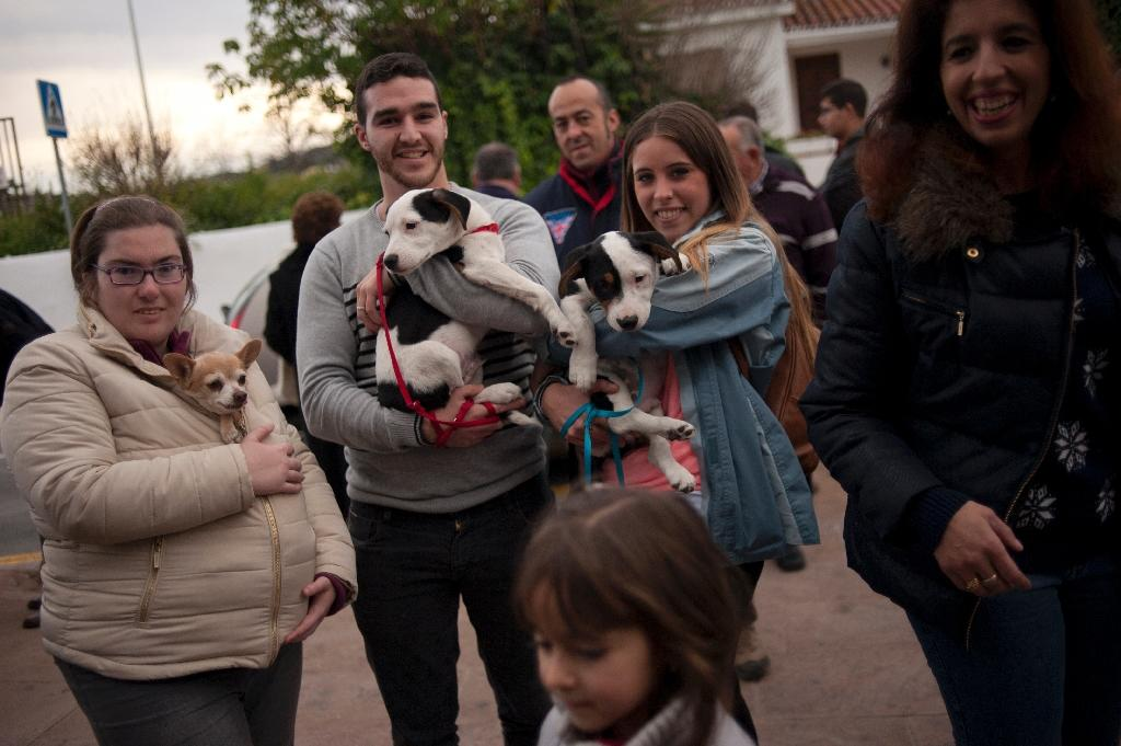 People wait with their dogs to be blessed by a priest on San Anton Abad's Day (Saint Anthony), in Churriana, near Malaga on January 17, 2016 (AFP Photo/Jorge Guerrero)