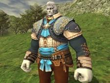 Still more details on Final Fantasy XI's coming update