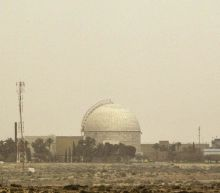Israel strikes back at Syria after Dimona nuclear reactor missile alert