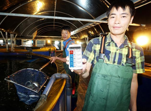 Korean carrier upgrades eel farm, makes the Internet of (slimey) Things