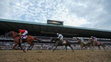 Horse racing-Tiz the Law ready to shine as all eyes turn to Belmont
