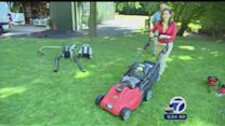 Consumer Reports tests lightweight yard equipment