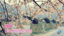 2017年日本櫻花開花予想日出爐!