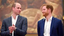 'William gets on and does it': Royal insider reveals the Duke of Cambridge is more confident than Harry