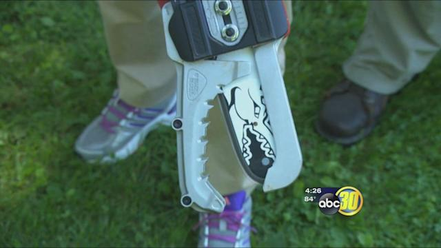 Consumer Reports: fall cleanup made easier