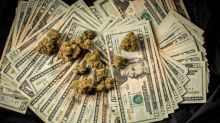 Artificial intelligence suggests that the rise in cannabis stocks could be near its end