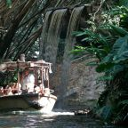 Sinking Jungle Cruise Ride at Disney World Sparks Hilarious Twitter Reactions