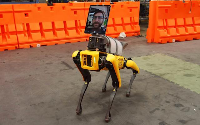 Boston Dynamics' robot dog is chipping in to help COVID-19 patients