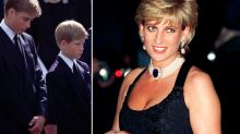 If Diana had seatbelt on she would've walked away with just a 'black eye', pathologist claims
