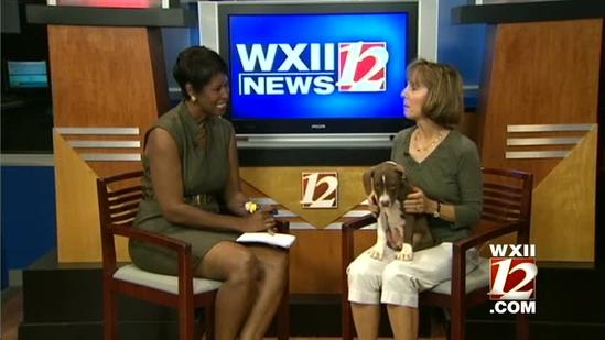 Noon Pet Of The Week: Tyson