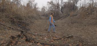 VÍDEO: Pantanal em chamas despedaça vidas e famílias