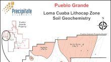 Precipitate Identifies Several Multi-Element Soil Geochemical Anomalies at the Pueblo Grande Gold Project in Dominican Republic