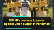 TDP MPs continue to protest against Union Budget in Parliament