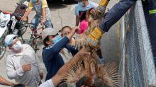 América Central tenta atenuar a fome devido ao confinamento pela COVID-19