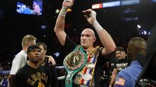 Boxing world champions 2020: Every division title holder from heavyweight to flyweight
