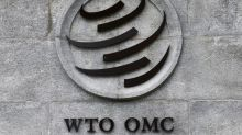 WTO appeals judges to stay on to complete several decisions - WTO official