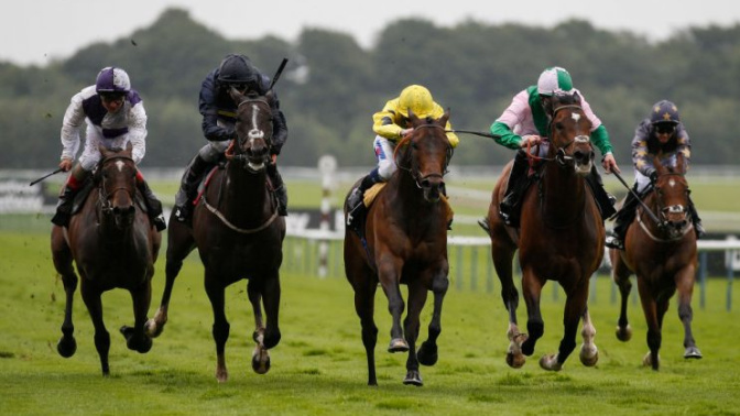 Horse Racing Tips: Election Day gets the vote at Kempton this evening
