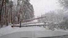 Heavy snow kills one, snarls travel, in U.S. southeast