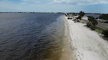 Yahoo News explains: The tiny algae causing big problems in Florida
