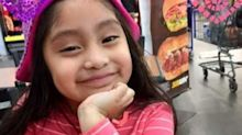 Missing 5-year-old from New Jersey was likely lured into van