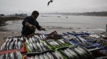 Chinese fishing flotilla nears Peruvian waters, prompting US-Beijing spat