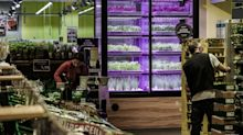 Kroger launches farms to grow its own produce on site