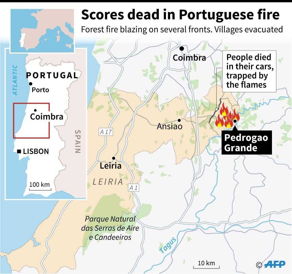 Dozens dead in Portugal forest fires (AFP Photo/Gillian HANDYSIDE)