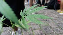 Coroner claims woman died of a marijuana overdose
