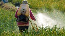 Um em cada 5 agrotóxicos liberados no último ano é extremamente tóxico