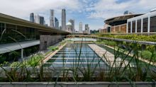 National Gallery Singapore's rooftop installation features living plants from reclamation sites