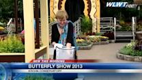 Butterfly show opens this weekend