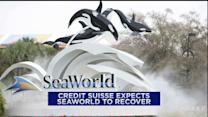 SeaWorld recovery? Family Dollar bidding war; Schlumberger upside
