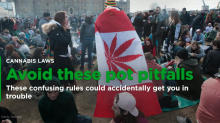 The most confusing marijuana laws that could cost you thousands