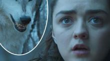 That Arya and Nymeria scene in GoT explained