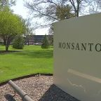 Monsanto's Roundup caused California man's lymphoma, jury finds