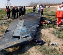 Don't turn plane crash into political issue: Iran foreign ministry spokesman
