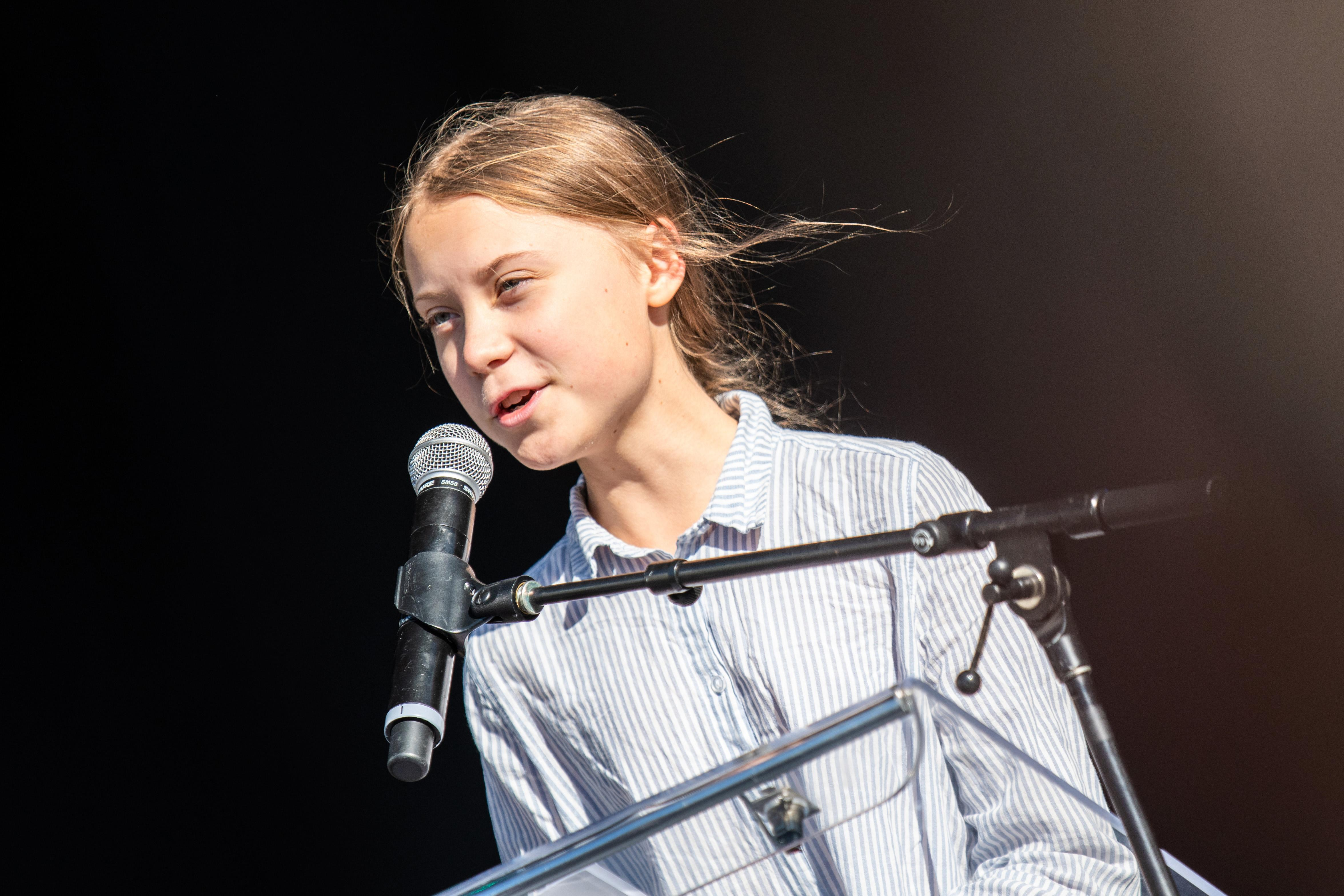 Fatboy Slim pays homage to Greta Thunberg with 'Right Here, Right Now' remix
