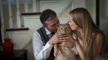 Casal adota gato gordinho e o inclui em um adorável ensaio de casamento