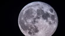 Scientists believe there may be life on the Moon - that travelled there from Earth