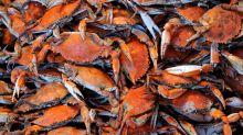 【異動尋寶】一隻蟹、兩隻蟹、三隻蟹(魏力)