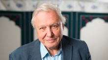 UK voters 'spat in Europe's face' by choosing Brexit, says Sir David Attenborough