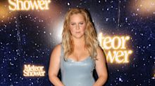 Amy Schumer basically became a Victoria's Secret Angel after wearing this curve-hugging gown